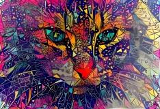 Cat_4313