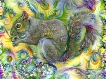 Squirrel _4443