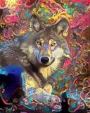 Wolf_4658