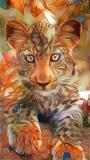 Leopard _4873