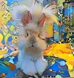Rabbit _4876
