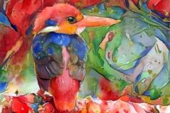 Bird_3617