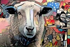 Sheep_3681