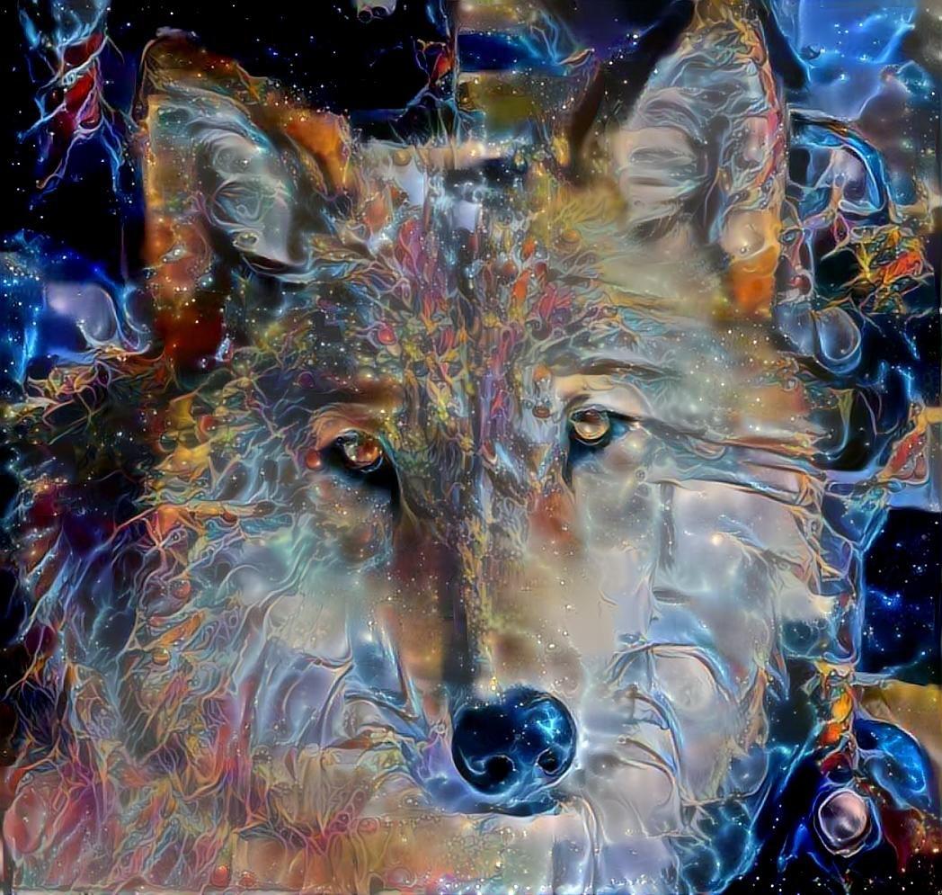 Wolf_5226