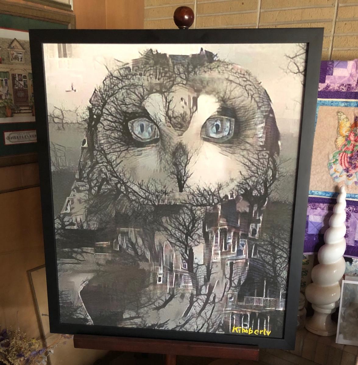 An Owl Watching